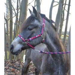 """Licol + longe nylon """"pony..."""