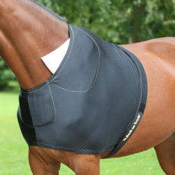 Back on Track - Protection pour épaule Welltex